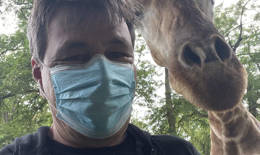 Mein Freund Zikomo und ein Nashorn